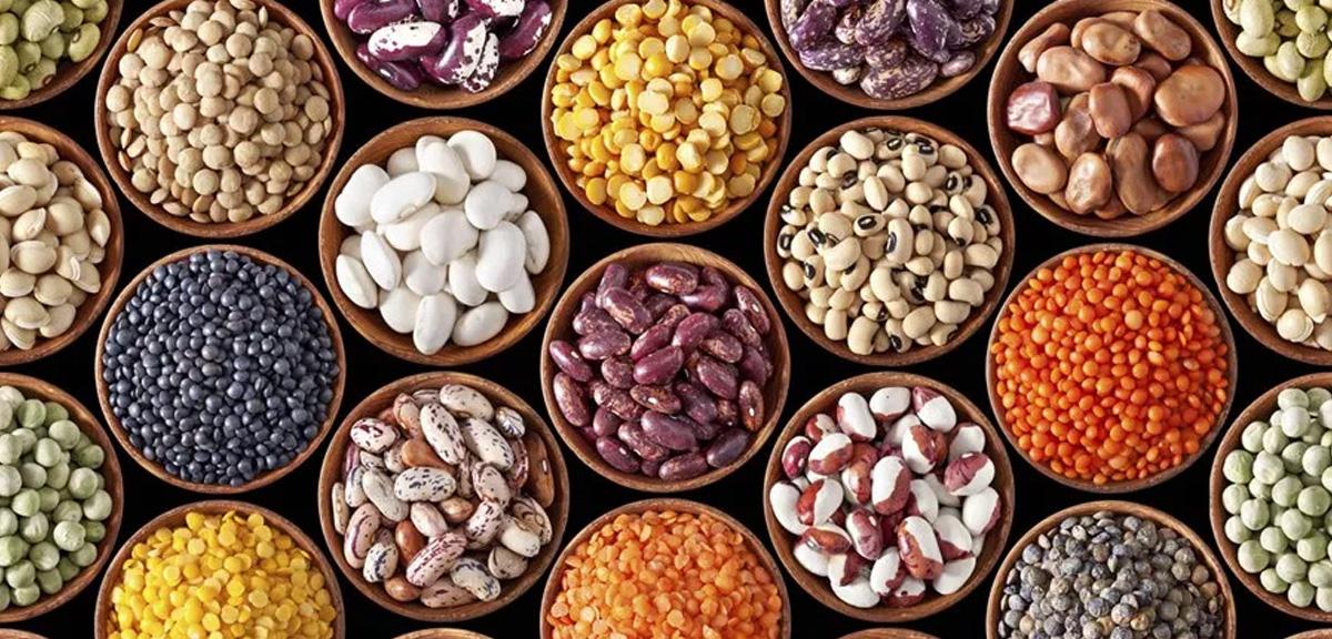 O feijão e seus benefícios para a saúde