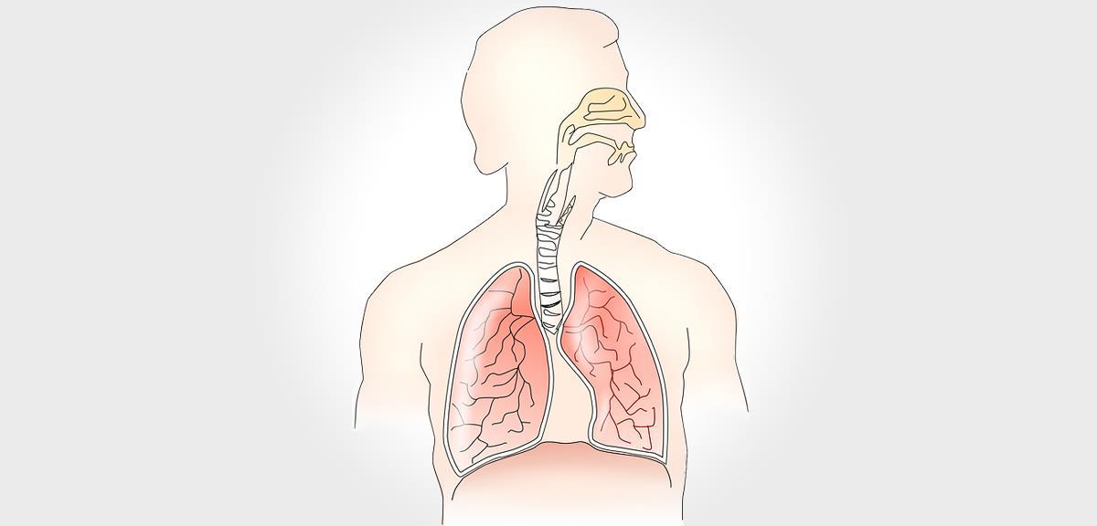 Fortaleça Seu Sistema Respiratório com Técnicas Simples!