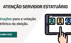 Instruções para votação eletrônica da Eleição de Membros do Conselho Administrativo e do Conselho Fiscal